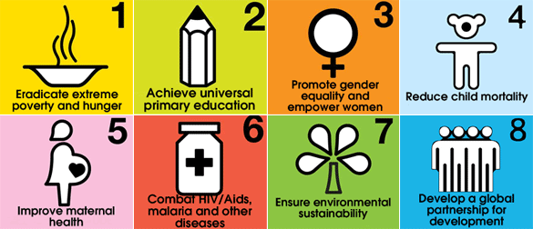 The UN MDGs Era: News & Briefings (2009 – 2015)